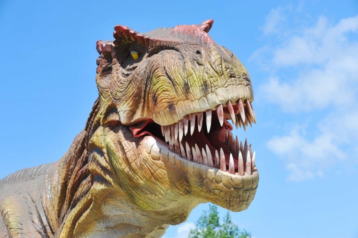 T-Rex Ralph's Round Up: Meet the Family