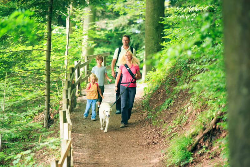 Family Day Out - Father's Day Idea